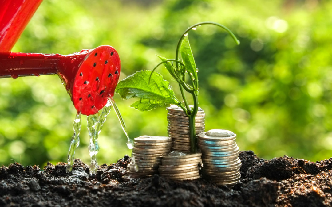 Pathway to Wealth Guide – 2. Invest the Difference in Good Quality Growth Assets
